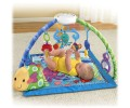 Fisher-Price - Centru activitati Discover Grow Deluxe Musical Mobile Gym