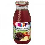 Hipp Suc de fructe rosii, 200 ml