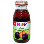 Hipp Suc de prune, de la 4 luni, 200 ml