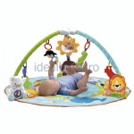 Fisher-Price - Precious Planet Deluxe Musical Activity Gym